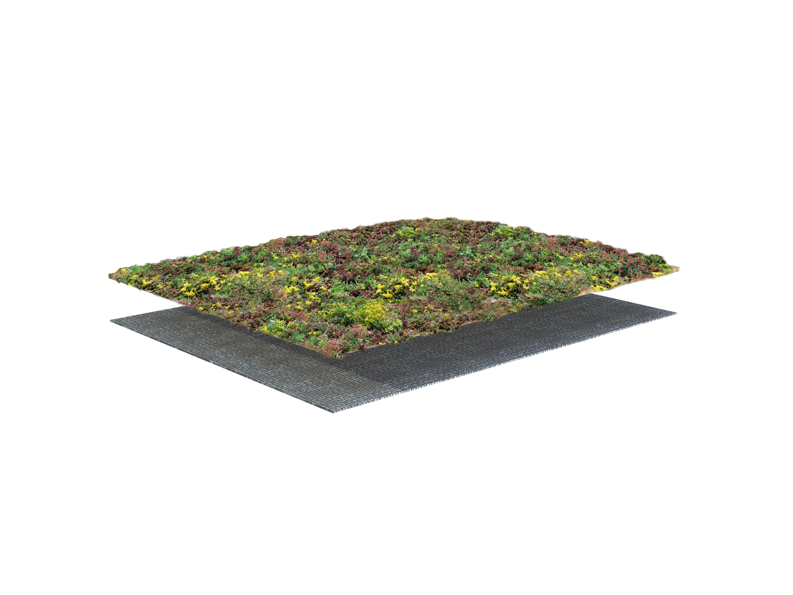 Slope with Sedum-mix blanket – system structure