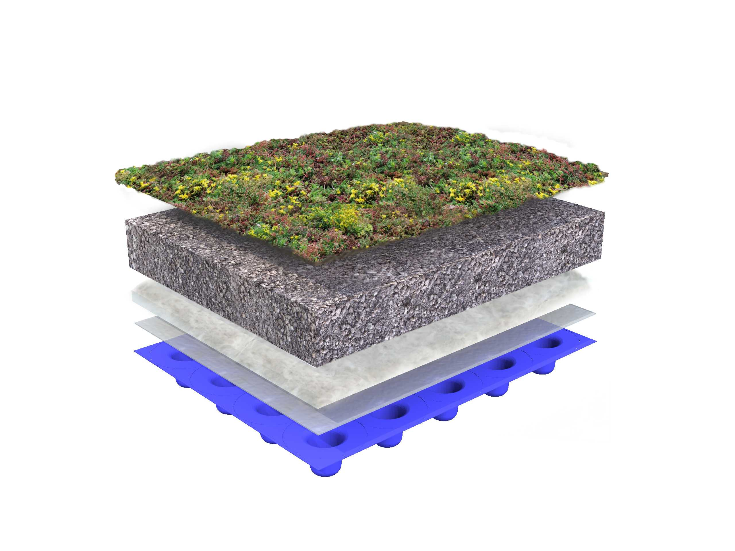 Green roof system structure – flat roof with Sedum