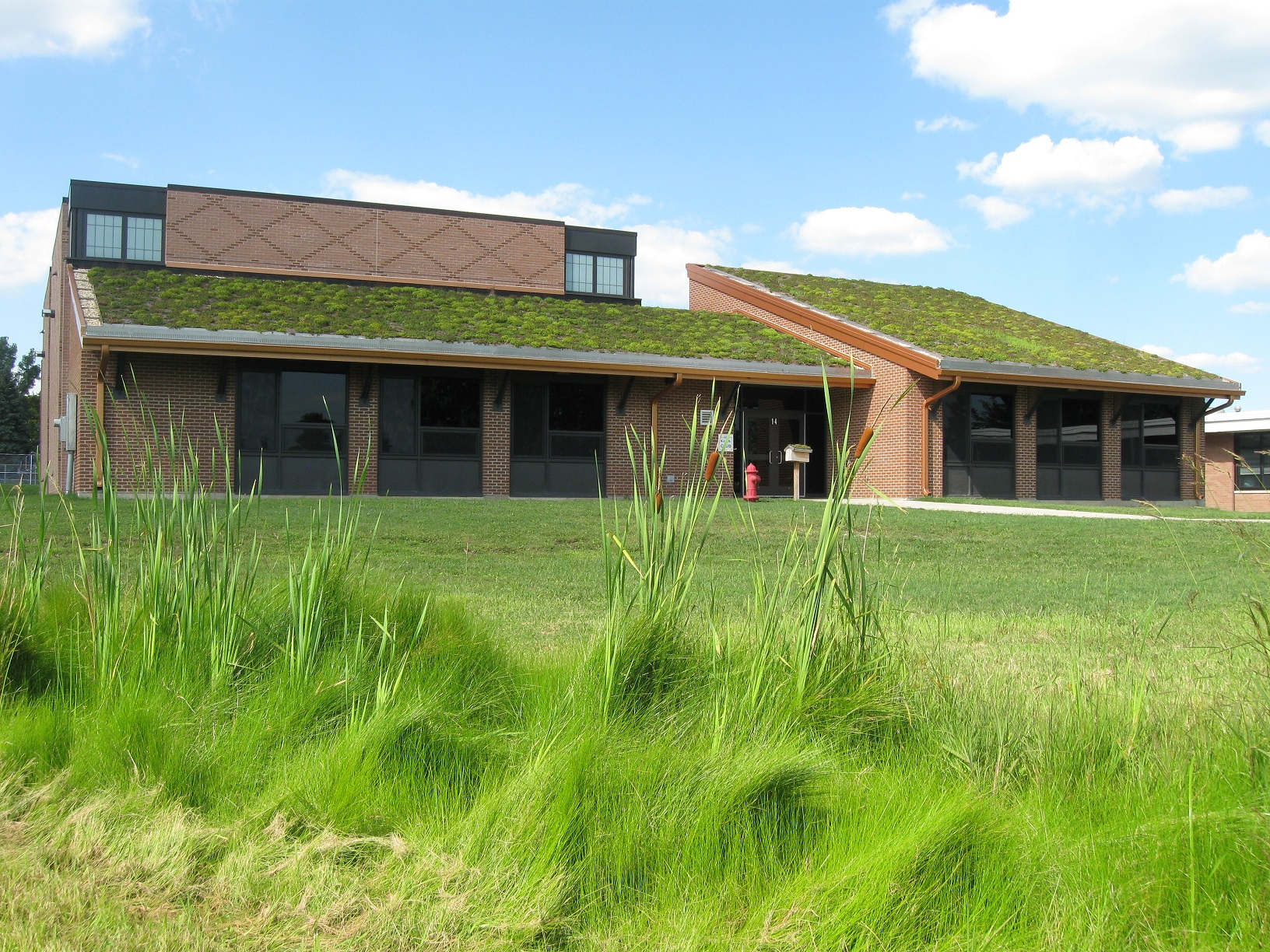 Steeply pitched green roof