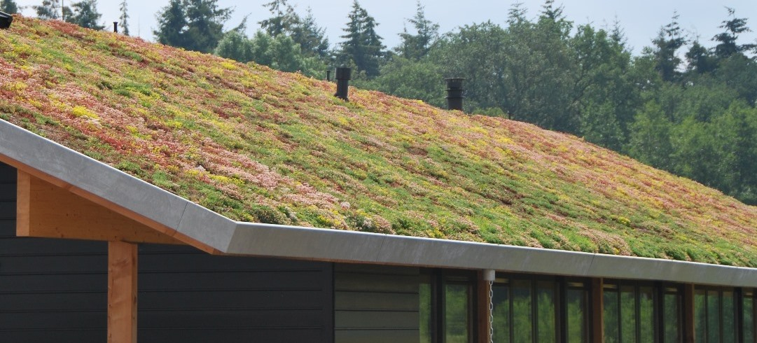 Products for green roof