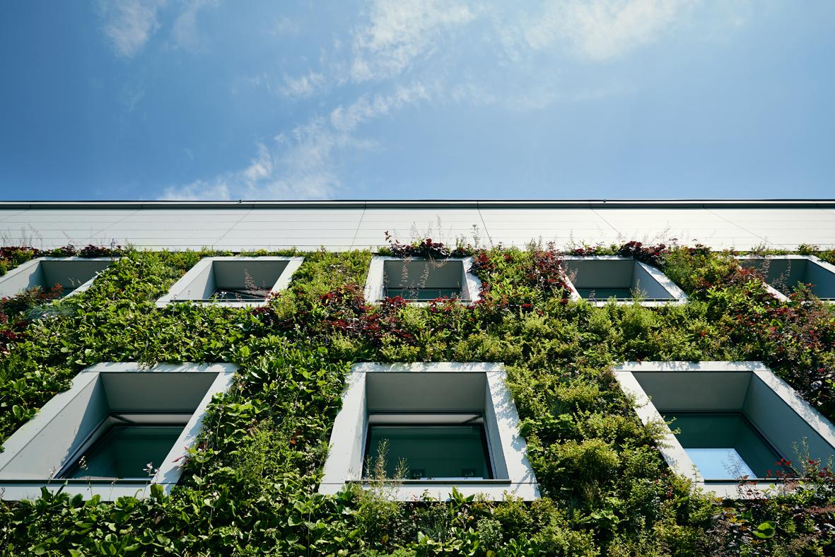 Green facade FNP-building in Warsaw, Poland