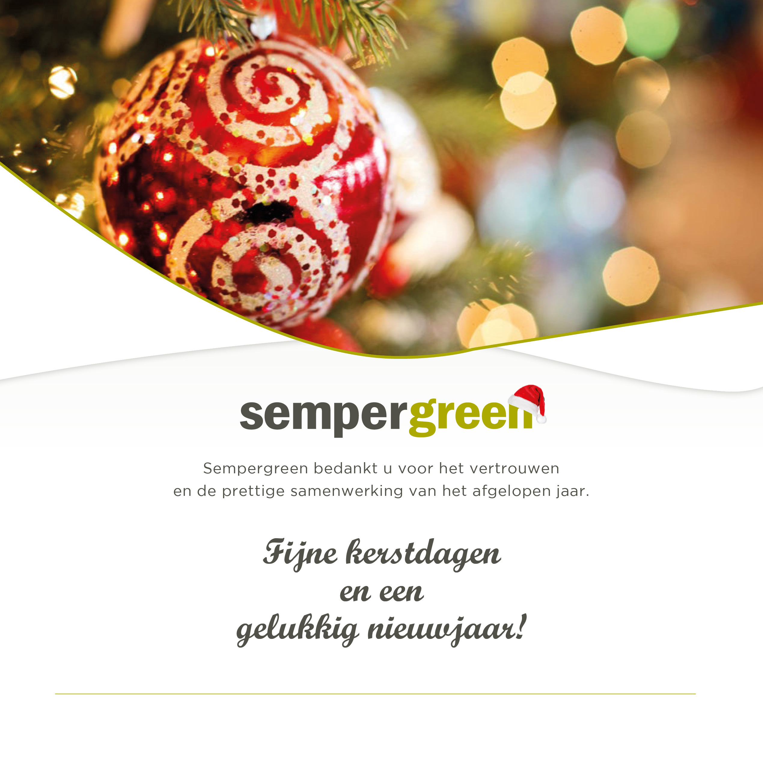 Kerstwens Sempergreen