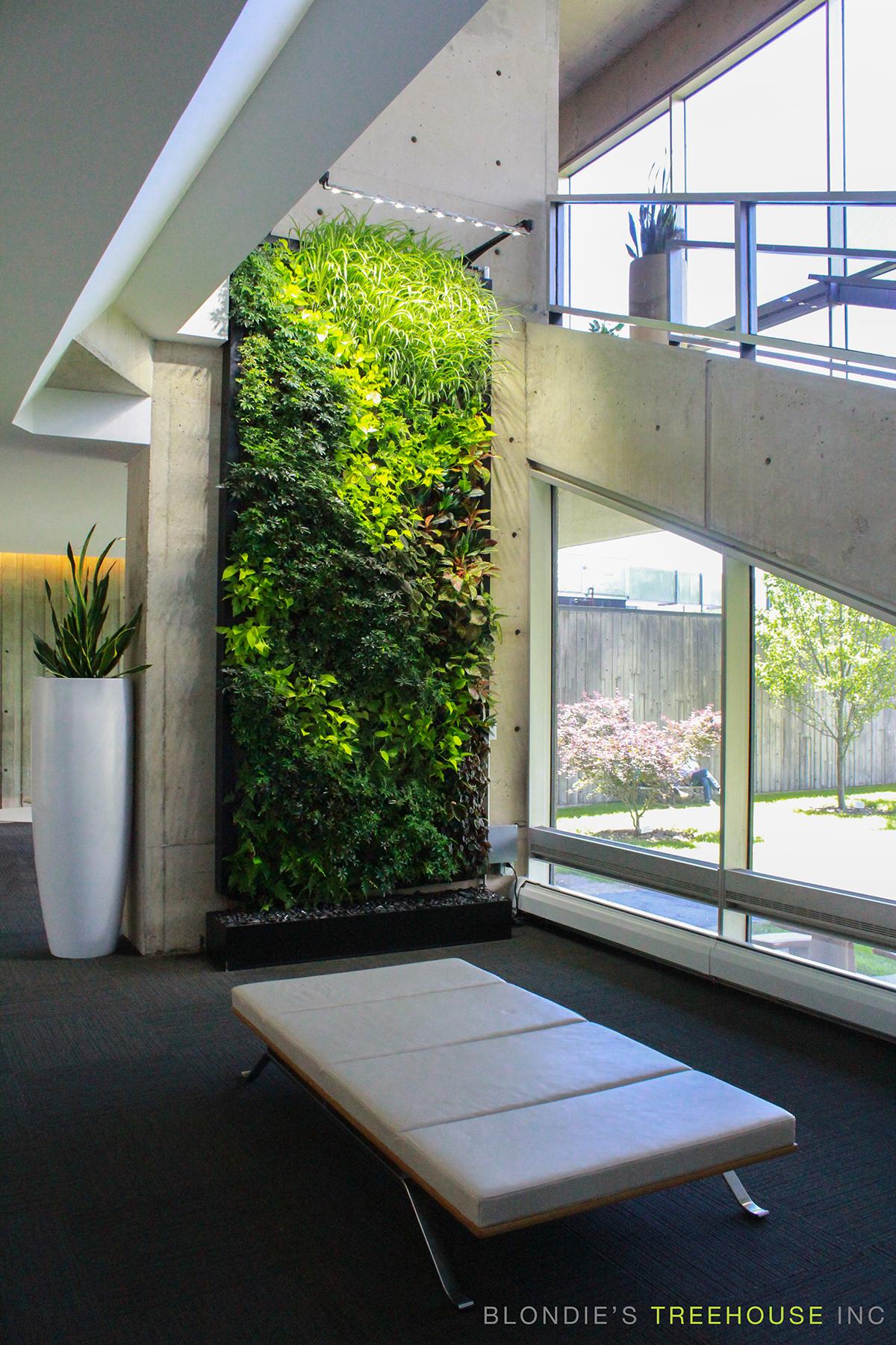 SemperGreenwall Living Walls in Toronto - Sempergreen