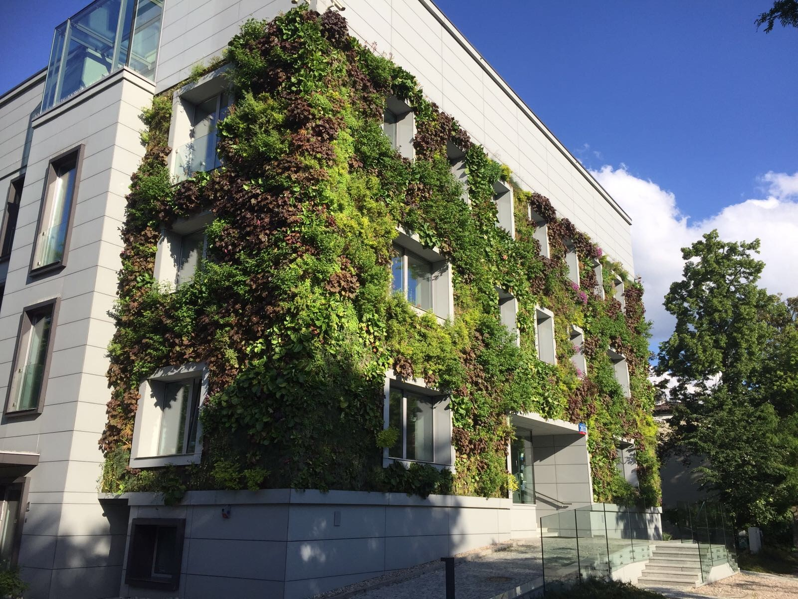 Outdoor SemperGreenwall Warsaw, Poland, June 2017