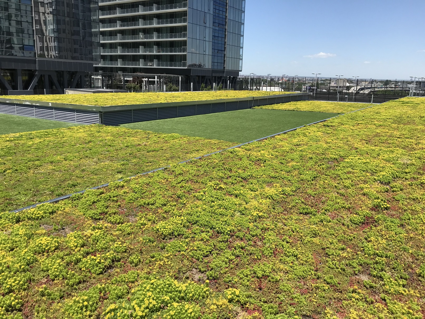 On top of the parking garage a multi-leveled green roof is created