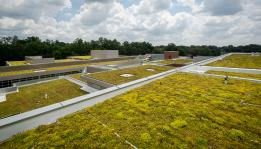 Green roof for contractors
