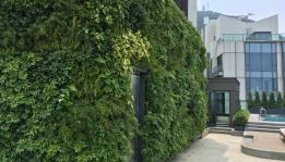 Living wall for developers