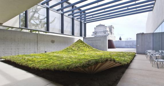 Green ground covering for architects