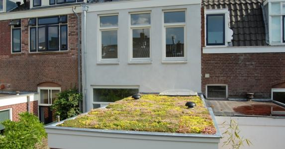 Green roof for consumers