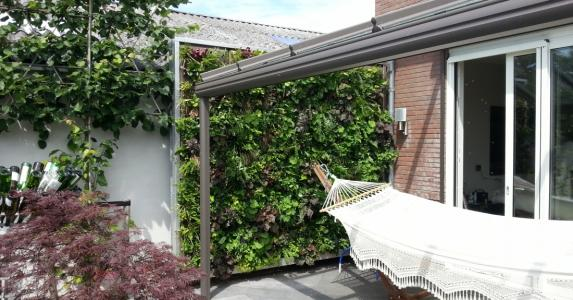 Living wall for consumers
