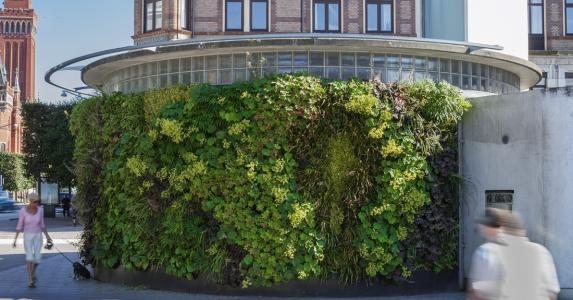 Living wall for government organizations