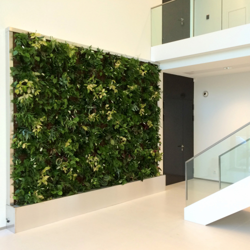 SemperGreenwall CompactLine