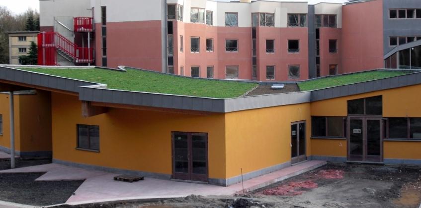 Sloping Sedum Roof Mons Belgum Sempergreen