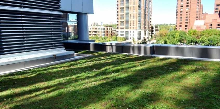 Green Roof Centennial Place Calgary Canada Sempergreen