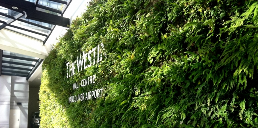 The westin hotel features green wall sempergreen for Green wall vancouver