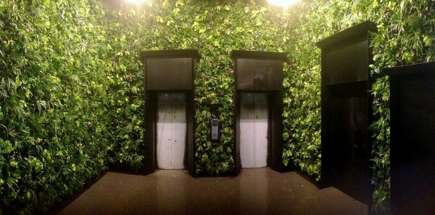 Elevator Lobby Covered With Green Wall Sempergreen