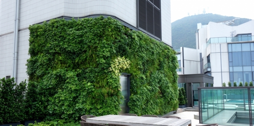 Living Wall System On Roof Terrace Arezzo Sempergreen