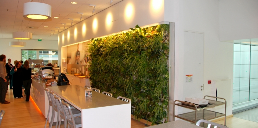 Indoor living wall headquarters Philips - Sempergreen
