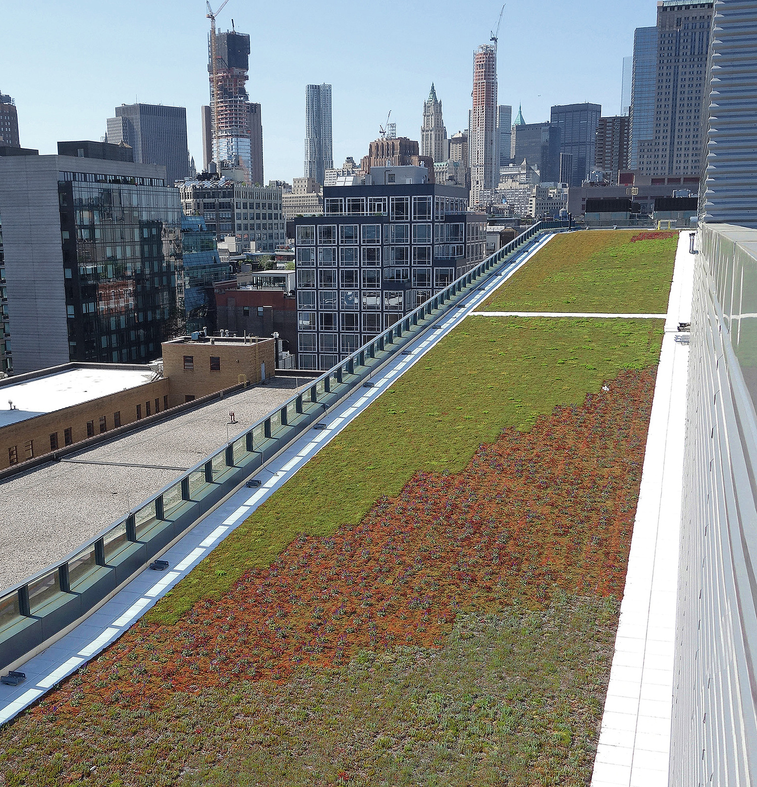 Expanding Green Roofs in NYC is win for environment