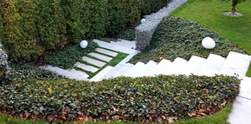 Private Garden With Sedum Ground Covering Sempergreen